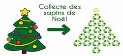 07/01 - Collecte des sapins de Noël