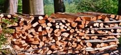 07/01 - Vente de bois de chauffage 2020 : Remise en vente des lots invendus le 18 décembre 2020