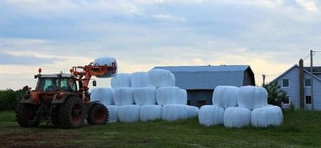 08/04 - Campagne 2019 : Collectes de plastiques agricoles non dangereux, de cordages plastique et des filets d'enrubannage