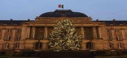10/12 - Le Sapin de Noël du Palais royal provient de notre Commune...