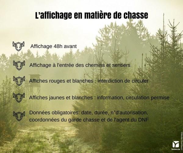 Img_Affichage chasse