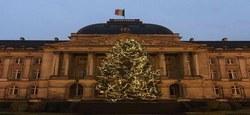 Abattage du Sapin de Noël 2018 destiné au Palais royal de Bruxelles