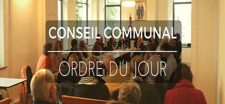 14/11 - L'ordre du jour du conseil communal du 21 novembre 2019 est disponible...