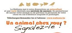 15/11 - Demandez votre autocollant « Sauvez nos animaux » pour informer les services de secours que des animaux vivent aussi chez vous !
