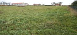 02/06 - Vente d'herbe sur pied : Appel aux candidatures