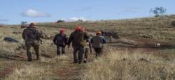 10/09 - Location des droits de chasse 2022-2031 : le cahier des charges et ses annexes cartographiques sont disponibles...