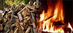 10/04 - Vente de bois de chauffage : 24 lots de 10 stères