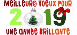 13/01 - Voeux communaux 2019