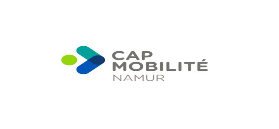 06/05 - Elections 2019 : Vous êtes une personne à mobilité très réduite ? Ceci peut vous intéresser !
